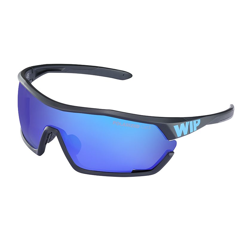 1. GUST AERO POLARIZED